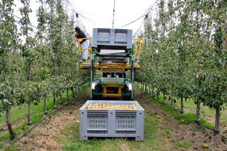 Our machines at work - N BLOSI agricultural machinery